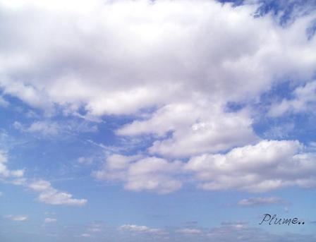 Sky_116